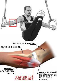 Фото промежноти гимнасток